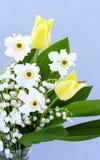 Fragrant bouquet Royalty Free Stock Photos