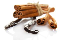 Fragrant cinnamon and the bitter vanilla Royalty Free Stock Photography