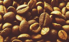 Fragrant coffee beans Stock Photography