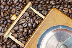Fragrant coffee beans in coffee grinder Royalty Free Stock Image