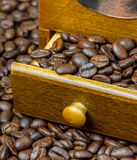 Fragrant coffee beans in coffee grinder Royalty Free Stock Photos