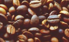 Fragrant coffee beans Stock Photo