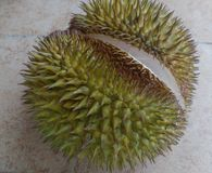 Fragrant Delicious Ripe Durian Philippines stock image