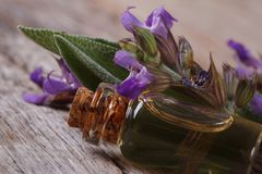 Fragrant essence of sage in a glass bottle macro. Horizontal Royalty Free Stock Image
