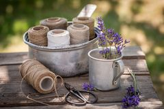 Fragrant and fresh lavender ready to dry in summer. On wooden table royalty free stock photos