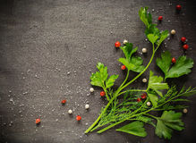 Free Fragrant Fresh Parsley And Dill Arranged On A Diagonal  Dark Background. Royalty Free Stock Photo - 81349715