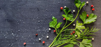 Fragrant fresh parsley and dill arranged on a diagonal  dark background. Stock Image