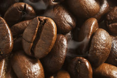 Fragrant fried coffee beans. Closeup flavored roasted coffee beans Stock Image