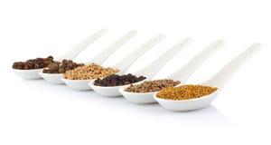Fragrant grain in porcelain spoon Stock Images