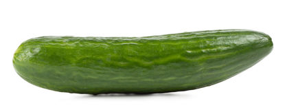 Fragrant green cucumber Royalty Free Stock Photo