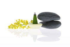 Fragrant incense, pebbles and flower Stock Image