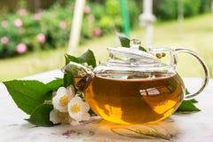 Fragrant jasmine tea Royalty Free Stock Photos