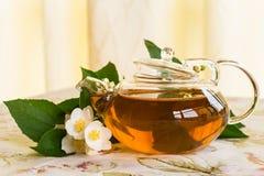 Fragrant jasmine tea Stock Photo