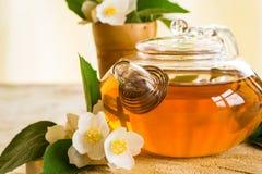 Fragrant jasmine tea Royalty Free Stock Photo