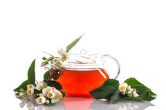 Fragrant jasmine tea Royalty Free Stock Photos