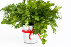 The fragrant leaves of dill and parsley are in a small  bucket Stock Photography