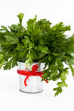 The fragrant leaves of dill and parsley are in a small  bucket Royalty Free Stock Photo