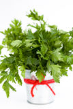 The fragrant leaves of parsley is a small bucket Royalty Free Stock Images