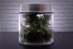 Fragrant marijuana buds in glass jar stock images