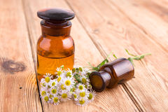 Fragrant oil in a glass bottle with camomile flowers on wooden t Stock Image