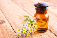 fragrant oil in a glass bottle with camomile flowers on wooden t Royalty Free Stock Images