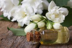 Fragrant oil of jasmine flowers macro horizontal. Stock Photos