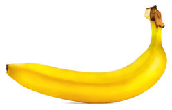 Fragrant ripe banana Stock Image