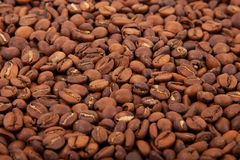 Fragrant roasted coffee beans. Many fragrant coffee beans spilling on the table Stock Photography