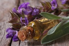 Fragrant sage oil in a glass bottle. On the table macro. horizontal Royalty Free Stock Image