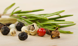 Fragrant scented natural spices with a sprig of rosemary Stock Image