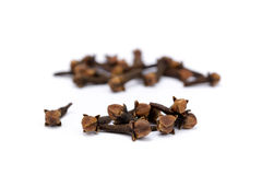 Fragrant spices cloves. Isolated on white background Stock Photography