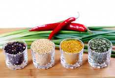 Fragrant spices Stock Images
