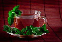 Fragrant tea with fresh leaves of green tea Stock Photo