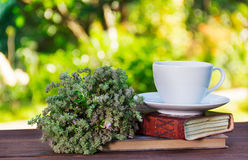 Fragrant tea with herbs in the garden. A cup of tea and thyme in the background of a summer garden. Romantic concept royalty free stock images