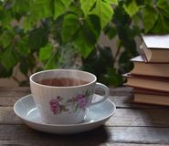 Fragrant tea, and the interesting book that can be better... Stock Images