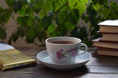 Fragrant tea, the Swiss chocolate and the interesting book that can be better... Stock Image