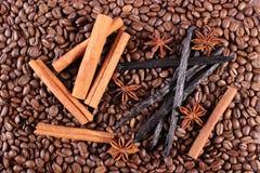 Fragrant vanilla, cinnamon sticks, star anise on coffee grains Stock Images