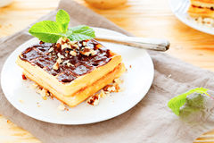 Fragrant waffles with chocolate Royalty Free Stock Photos