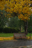 Fragrant wzgórze park w Peking Zdjęcia Stock