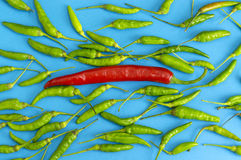 Frais des piments rouges et des piments verts Photographie stock
