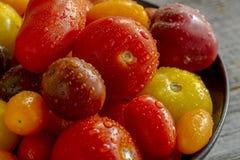 Frais des tomates de jardin dans la cuvette photographie stock libre de droits