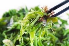Frais seaween photos stock