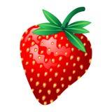 fraise illustration stock
