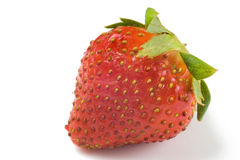 fraise Image stock