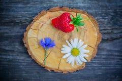 Fraise, bleuet et camomille sur une coupe circulaire en bois de scie Photographie stock libre de droits