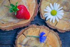 Fraise, bleuet et camomille sur une coupe circulaire en bois de scie Image libre de droits