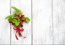 fraise de groupe sauvage Photo stock