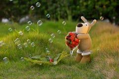 Fraise de lapin de jouet de peluche Images libres de droits