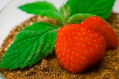 fraise en bon état Photographie stock libre de droits
