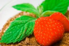 fraise en bon état Image stock